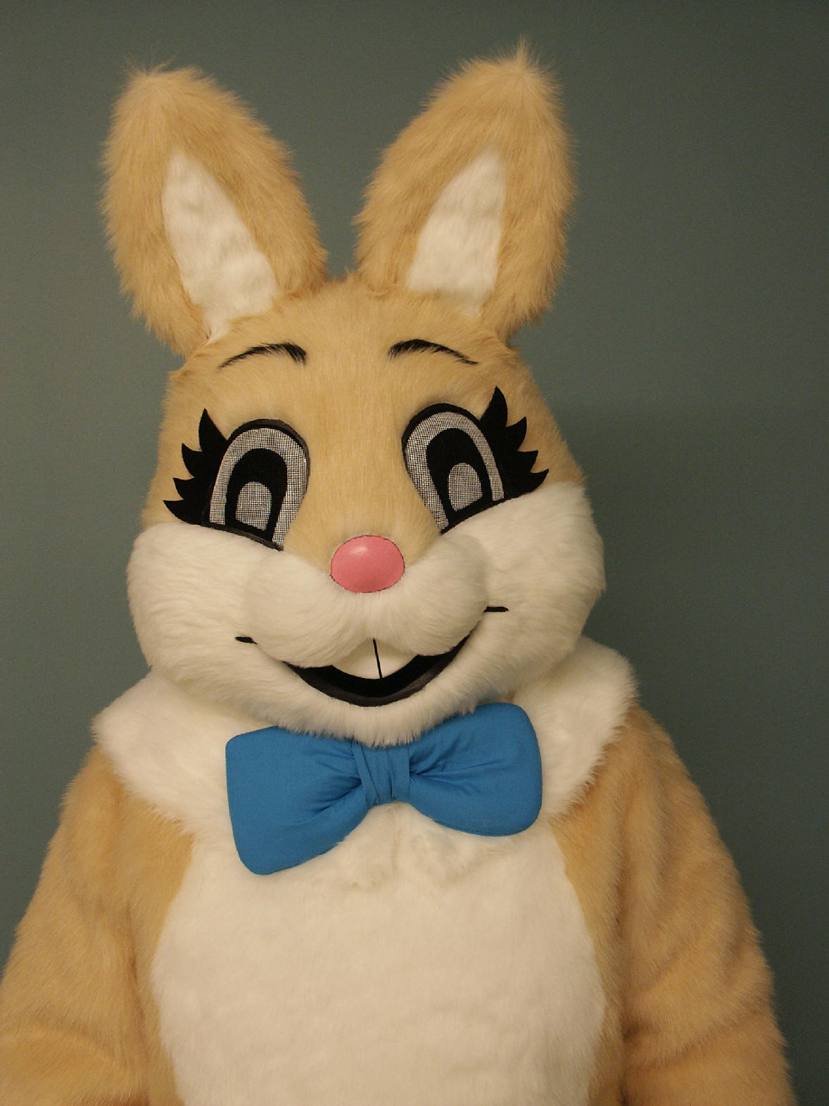 Rabbit Costume Head