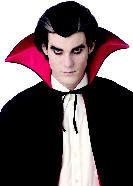 Gothic Wig,Horror Wigs,Vampire Wig from Costumes of Nashua NH,MA,NY,ME,CT,VT,PA,NJ