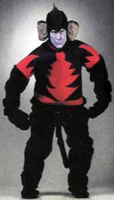 evil monkey from wizard of oz costume
